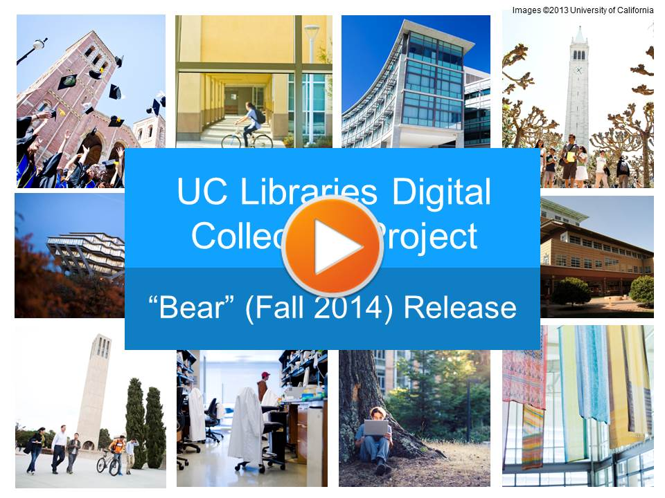 bear_release_video_image