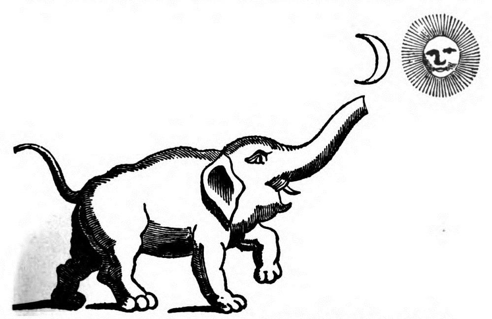 elephant_with_sun