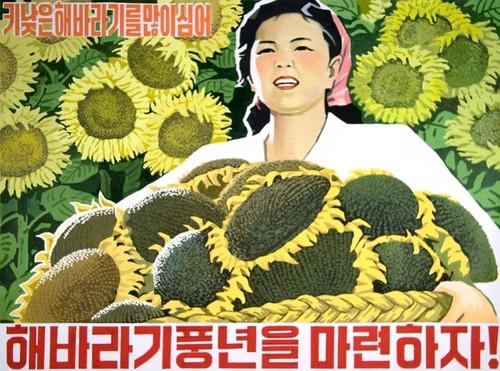 2016-04-06_nkoreanprop